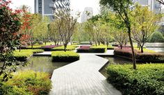 Cicada Landscape Architecture - Singapore #landscapearchitecturewater