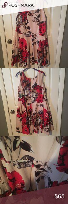 NWT Floral Skater Dress Brand new, with tags. Blush Floral skater dress. Scoop neckline;m, exposed zipper up the back, sturdy material and POCKETS! Size 20W Taylor Woman Dresses