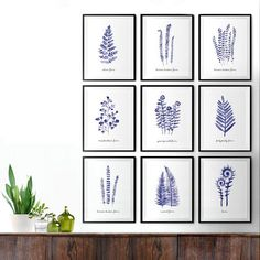 Navy blue fern leaves watercolor print. Minimalist watercolor painting, Botanical print, Bedroom art print, Living room art, Bathroom art, Indigo blue This set of 3 fern leaves watercolor art will make an elegant collection for your living room or bedroom. They were painted by me, Tinarosa