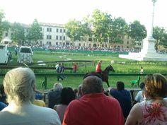 Ferrara: novità sui cavalli