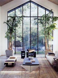 Tall windows and tropical plants. But different, more comfortable furniture.