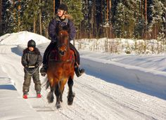 Skiing behind the horse. Top 10 of Swedens best winter activities for families, 2011 Winter Activities, Horseback Riding, Bradley Mountain, Equestrian, Skiing, Horses, Families, Colors, Top