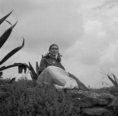 Frida - photos & quotes