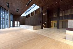 linz musiktheater concert hall in linz, austria by terry pawson architects