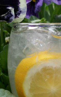 Sumptuous Backyard Splash - Barr Hill Honey Vodka, Lemon Juice, Sumptuous Ginger Syrup, your choice of fresh berry and mint garnish