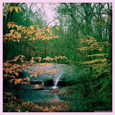 serenbe journal serenbe waterfall view