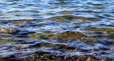 Kuvatarina: Ihmeellinen meri
