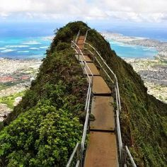 Stairway to Heaven in Hawaii.