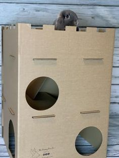 Box Company, House Rabbit, Second Floor, Two By Two, Recycling, Castle, Prints, Castles, Upcycle