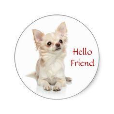 Hello Friend Long Hair Chihuahua Puppy Dog Stickers  ...  http://www.zazzle.com/hello_friend_long_haired_chihuahua_sticker-217445075337064350