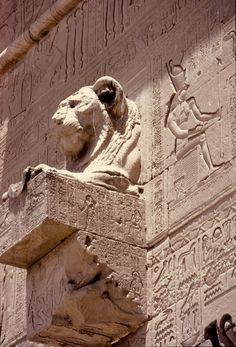 """Detalle de la """"górgola"""" existente en la parte central de la pared exterior occidental del TEMPLO DE DENDERA. Muestra la cabeza de una leona simbolo de la diosa SEKHMET."""