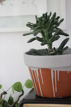 DIY painted plant po