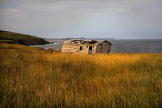 Lower Island Cove, Newfoundland M Photos, Newfoundland, New England, Vacations, Beautiful Homes, Scenery, Rocks, Canada, Island