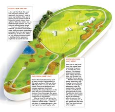 A well-designed hole changes every day with weather conditions, pin placement and firmness of the turf. The golfer who's willing to be flexible on club choice stands to gain over those who are set in their ways. Read more about Jack Nicklaus' strategy on flexibility of club choices. Jack Nicklaus, Golf Drivers, Weather Conditions, Gain, Flexibility, Golf Courses, Choices, Sketch, Illustrations