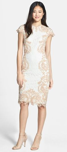 Embroidered Detail Lace Sheath Dress
