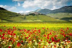 Castelluccio (Umbria)  10 Most Beautiful Small Towns in Italy Photos | Architectural Digest