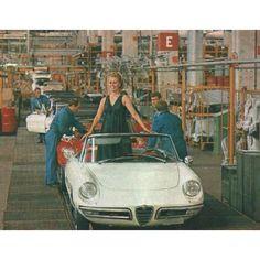 Alfa Romeo Spider Assembly Line - automobil Chevrolet Corvette, Corvette Cabrio, Alfa Romeo Logo, Alfa Romeo Cars, Rc Tank, Alfa Romeo Spider, Ferrari 348, Old Sports Cars, Sport Cars