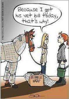 0e32760418 draft horses humor - Google Search Funny Horses
