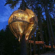 Balloon tree house