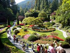 These gardens, Butchart Gardens, are absolutely breathtaking in Victoria, British Columbia, Canada Oh The Places You'll Go, Places To Travel, Places To Visit, Victoria Vancouver Island, Victoria Island, Buchart Gardens, Victoria British Columbia, Victoria Canada, Hawaii Adventures