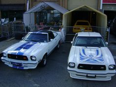 31 best cars 78 king cobra images king cobra ford mustangs autos rh pinterest com