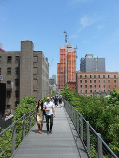 A bridge across the trees, the High Line, NYC High Line, Bridge, Places To Visit, Street View, Trees, New York, Nyc, Apple, Park