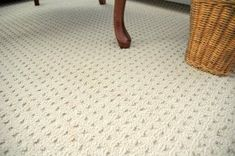 Best New Martha Stewart Carpeting In 2019 Things I Miss From 640 x 480