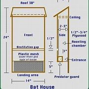 Free Bat House Patterns Bat House Build A Bat House Bat House
