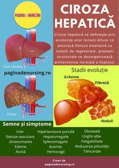 Human Anatomy, Dory, Metabolism, Healthy, Study, Passion, Travel, Medicine, Cholesterol