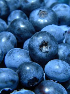 when is blueberry season? Light Blue Aesthetic, Red Aesthetic, Fruit Photography, Abstract Photography, Photography Portfolio, Aquarius Aesthetic, Blue Fruits, Blue Food, Love Blue
