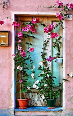 Door into the flowers in Burano, Italy - Burano is a small island located near Venice, famous for its bright colours reflecting into the green water. Legend says that the island's fisherman painted their houses so they could see the