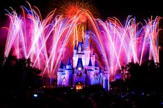 Disneyworld.