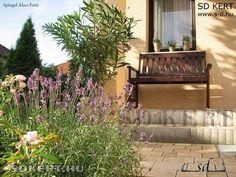 Outdoor Furniture, Outdoor Decor, Home Decor, Decoration Home, Room Decor, Home Interior Design, Backyard Furniture, Lawn Furniture, Home Decoration