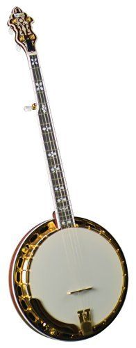 How difficult is learning banjo? : banjo - reddit
