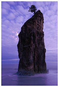 Split Rock, Olympic Peninsula, Washington state coast. Photo by Joe Rossbach.
