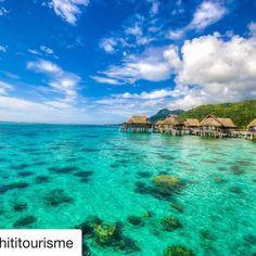 #ocean #mer #vacances #Tahiti #ShareMySea