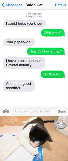 Text from Cat: Calvin office help hole puncher shredder #funnytext