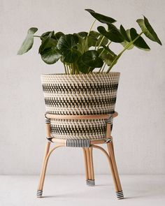20 Stylish Indoor Planters - Affordable Indoor Flower Pots for Your Plants Rattan Planters, Modern Planters, Rattan Basket, Indoor Planters, Diy Planters, Planter Ideas, Affordable Outdoor Furniture, Mason Jars, Indoor Flower Pots