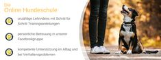 Lieblingshund-Training™ - Lieblingshund-Training™