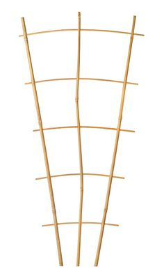diy bamboo trellis if you know anyone who has bamboo growing in