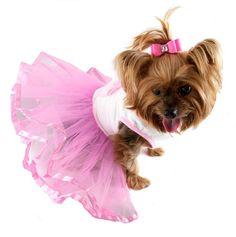 Cupcake Tutu Dog Dress - Cute Dog Clothes at GlamourMutt.com