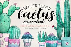 Watercolor Cactus and Succulent Set @creativework247