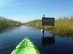 Everglades-Loxahatchee-Florida Everglades Paddling, Canoe, Kayak