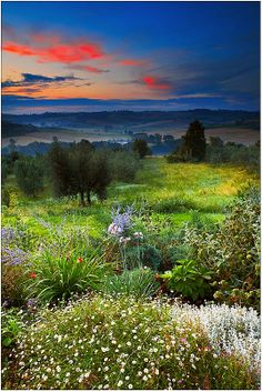 Sunrise - Cozzano, Umbria, Italy