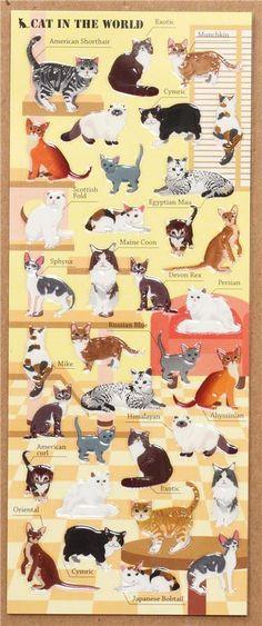 cute cat breed epoxy sticker by Mind Wave