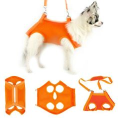 Outward-bound Pet sling Dogs Cats Carriers Travel Bag-Orange S… Rat Terrier, Dog Hammock, Dog Sling, Biking With Dog, Pet Dogs, Pets, Dog Items, Dog Wear, Dog Carrier