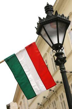 Hungarian flag, Budapest, May '09