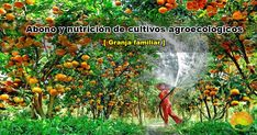 Capítulo siete sobre guía metodológica de valor de uso productivo y económico de subproductos agropecuarios y domiciliario para producción agroecológica. Outdoor, Compost, Agriculture, Farmhouse, Outdoors, Outdoor Games, Outdoor Living