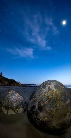 Moeraki Boulders, South Island, New Zealand. This reminds me of the Blue Star in Narnia while the Dawn Treader was voyaging the Eastern Sea. Oh The Places You'll Go, Places To Visit, Moeraki Boulders, Easy Jet, New Zealand Landscape, Kiwiana, New Zealand Travel, South Island, Australia Travel