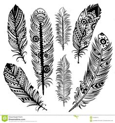 clipart feather black and white - Google zoeken